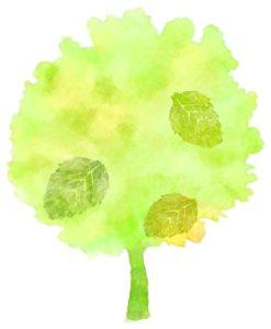 樹木葬の代表的な種類