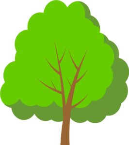 どんな人が樹木葬に申し込むのか