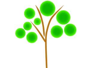 スピリチュアルに関心のある方に樹木葬はおすすめ