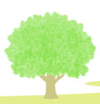 樹木葬にして後悔することはあるのか?